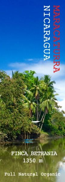 Maracatura - Nicaragua